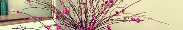 """17 ý tưởng cắm hoa trang trí nhà đẹp """"phát hờn"""""""