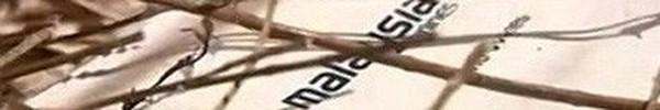 Phát hiện gói khăn giấy in logo Malaysia Airlines dạt vào bờ biển Úc
