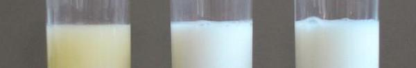 Sữa mẹ và những sự thay đổi kì diệu trong suốt quá trình cho con bú