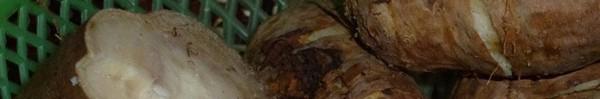 """Ăn loại củ này vừa """"hút"""" mỡ bụng lại vừa chữa bệnh tuyệt vời vào mùa đông: Chuyên gia Đông y """"bật mí""""!"""