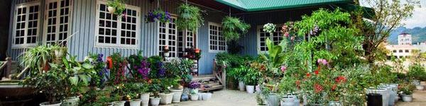 Mê mẩn ngôi nhà gỗ tràn ngập hoa trên cao nguyên đá Hà Giang