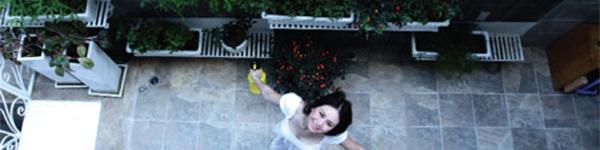 """""""Mướt mắt"""" với những khu vườn xanh tươi của nhà sao Việt"""