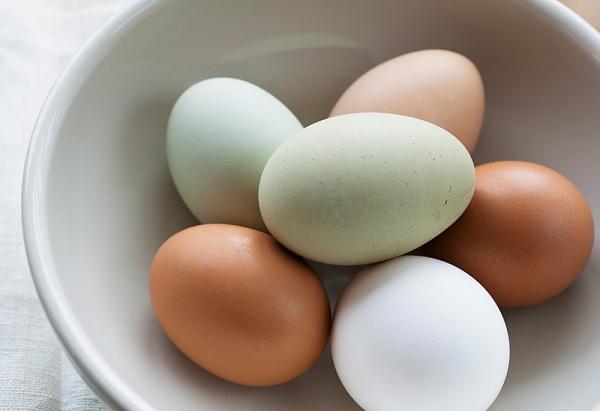 Cho con ăn trứng một cách khoa học nhất 1