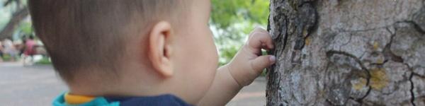 30 hoạt động Montessori giúp bố mẹ có tháng 11 đầy thú vị và đáng nhớ cùng con