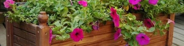 Những mẹo nhỏ giúp khu vườn của nhà bạn trở nên hoàn hảo