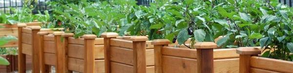 Những vườn rau đẹp mê mải và gọn gàng nhờ tấm pallet