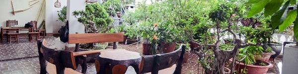 Mê mẩn với khu vườn xanh mướt gần 100m² trên sân thượng ở Ba Đình, Hà Nội