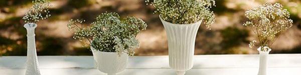 14 ý tưởng trang trí bàn tiệc cưới với hoa baby đẹp miễn chê