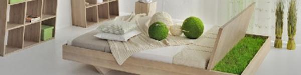 Những mẫu giường đa năng dễ đóng cho nhà chật