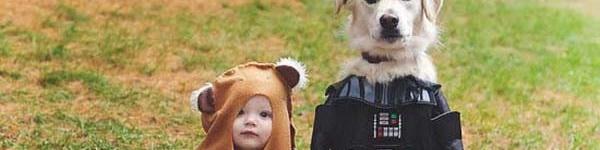 Video đáng yêu: Cún cưng đắp chăn ngủ cùng em bé