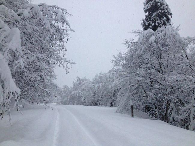 """Khung cảnh đẹp đến phát hờn của """"Frozen"""" trong đời thực - Ảnh 6."""