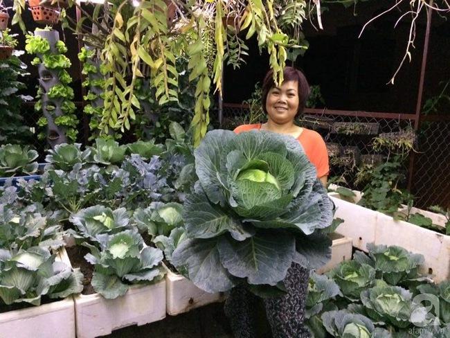 Mê mẩn vườn rau xanh mướt trên sân thượng 40m² với chi phí 7 triệu đồng của người chồng chiều vợ - Ảnh 5.