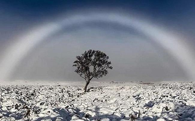 Những hiện tượng thiên nhiên đẹp lạ lùng nhưng khiến nhiều người hoảng sợ - Ảnh 16.