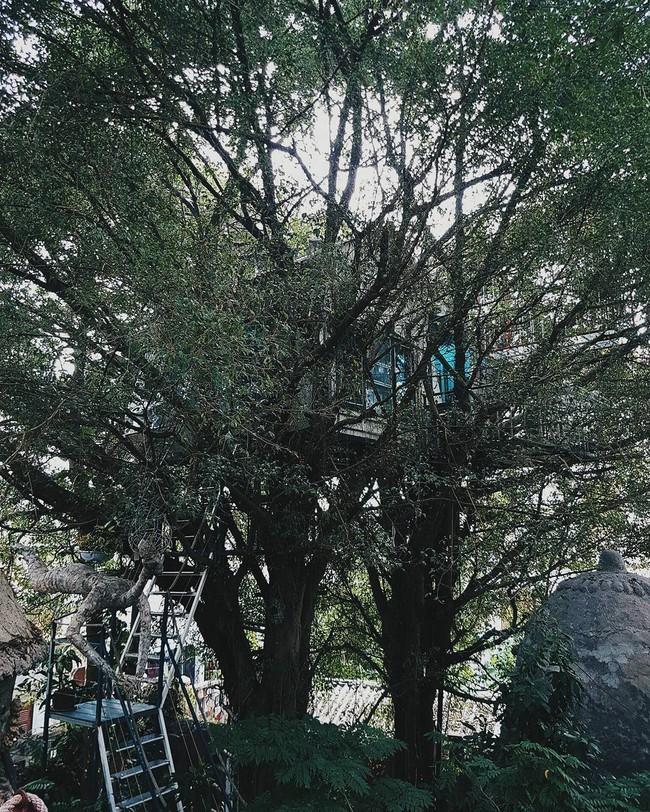 6 homestay cực xinh ở Hà Nội để nghỉ dưỡng dịp Tết dương lịch cho người lười đi xa - Ảnh 1.