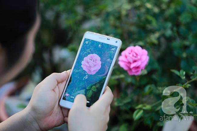 Cô gái khởi nghiệp bằng vườn hoa hồng, doanh thu tiền tỷ: Thế hệ tôi, làm thuê là khái niệm quá cũ! - Ảnh 8.