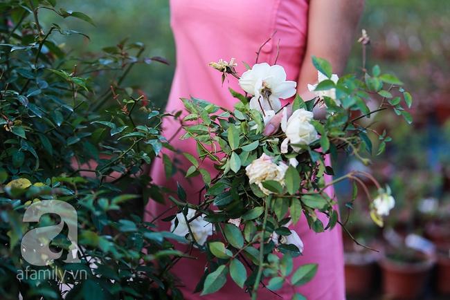Cô gái khởi nghiệp bằng vườn hoa hồng, doanh thu tiền tỷ: Thế hệ tôi, làm thuê là khái niệm quá cũ! - Ảnh 12.