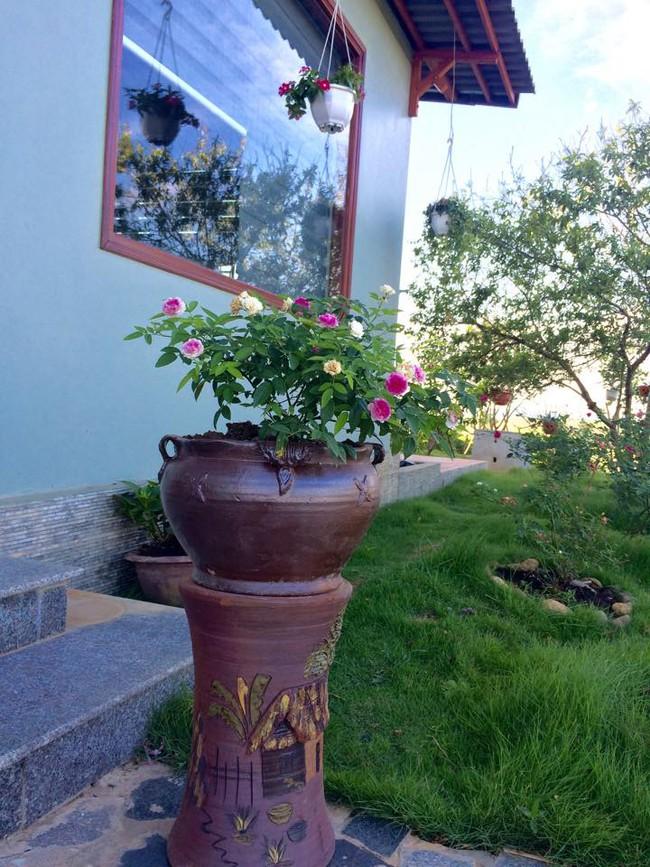 Ngôi nhà bé xinh, bình yên bên vườn hồng rực rỡ cách Hà Nội hơn 1 giờ đi ô tô - Ảnh 17.