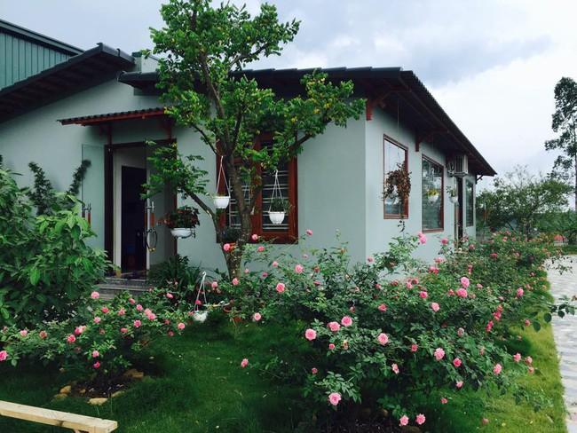 Ngôi nhà bé xinh, bình yên bên vườn hồng rực rỡ cách Hà Nội hơn 1 giờ đi ô tô - Ảnh 5.