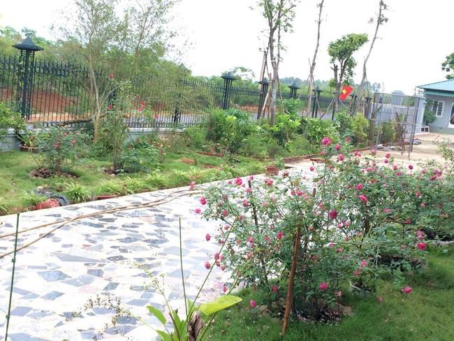 Ngôi nhà bé xinh, bình yên bên vườn hồng rực rỡ cách Hà Nội hơn 1 giờ đi ô tô - Ảnh 6.