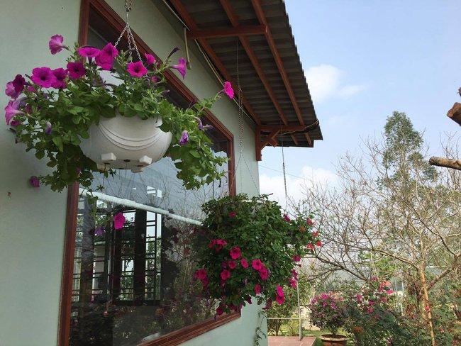 Ngôi nhà bé xinh, bình yên bên vườn hồng rực rỡ cách Hà Nội hơn 1 giờ đi ô tô - Ảnh 12.