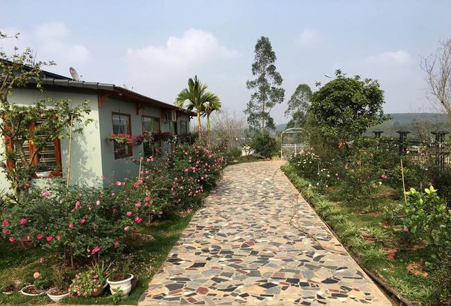 Ngôi nhà bé xinh, bình yên bên vườn hồng rực rỡ cách Hà Nội hơn 1 giờ đi ô tô - Ảnh 1.