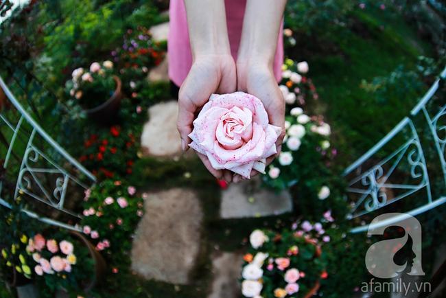 Cô gái khởi nghiệp bằng vườn hoa hồng, doanh thu tiền tỷ: Thế hệ tôi, làm thuê là khái niệm quá cũ! - Ảnh 17.