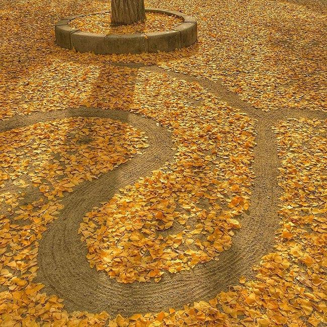 Mê mẩn với những tác phẩm nghệ thuật tuyệt đẹp từ... lá rụng - Ảnh 8.