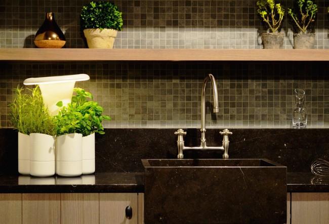 15 thiết kế chậu trồng cây gia vị thông minh và hiện đại cho những không gian nhỏ - Ảnh 1.