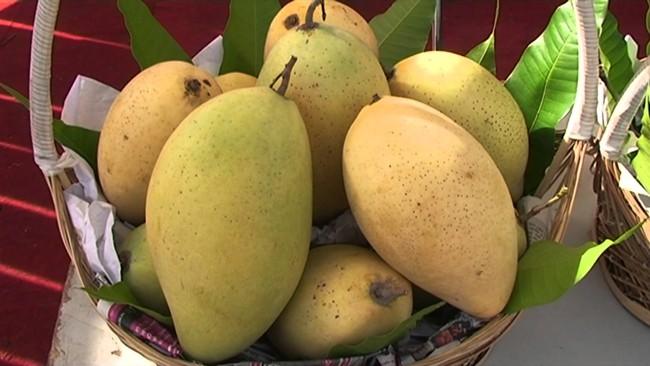 Chọn trái cây, cầm lên thấy thế này thì chắc mẩm là vừa chín tới, mua ngay kẻo lỡ - Ảnh 4.