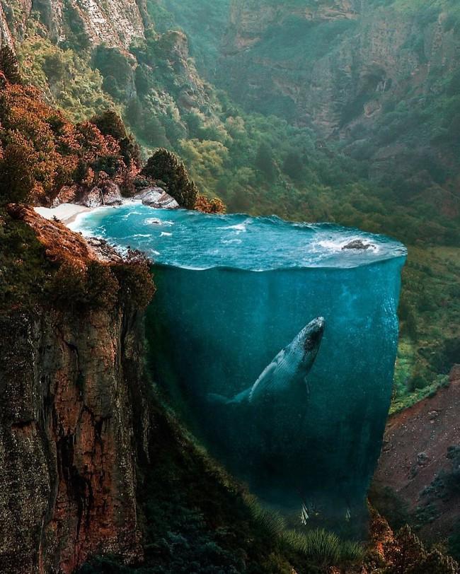 Lặng người trước những hình ảnh đẹp mê hồn chỉ có thể thấy trong mơ - Ảnh 1.