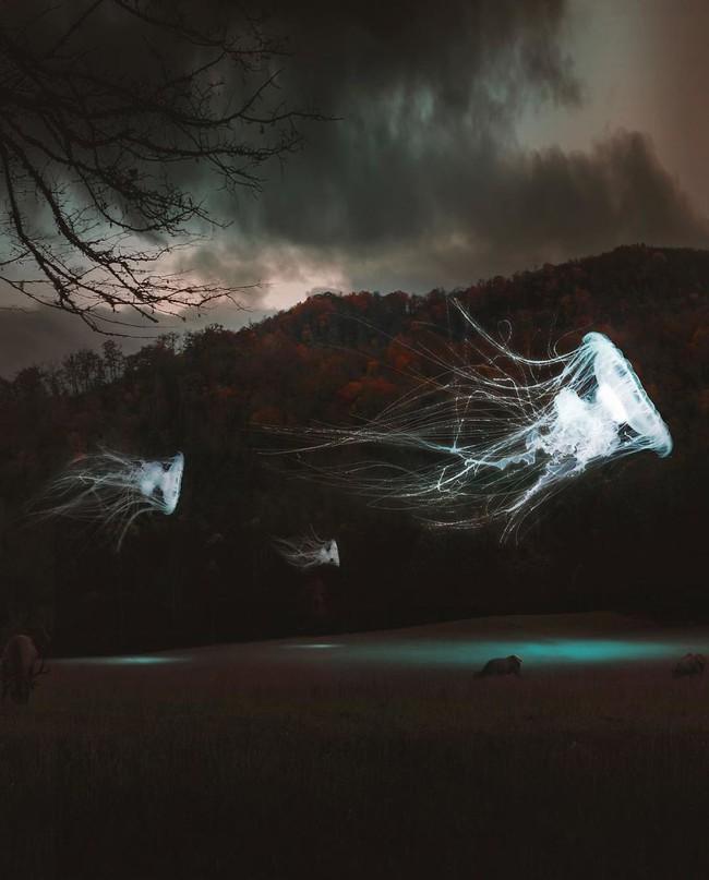 Lặng người trước những hình ảnh đẹp mê hồn chỉ có thể thấy trong mơ - Ảnh 14.