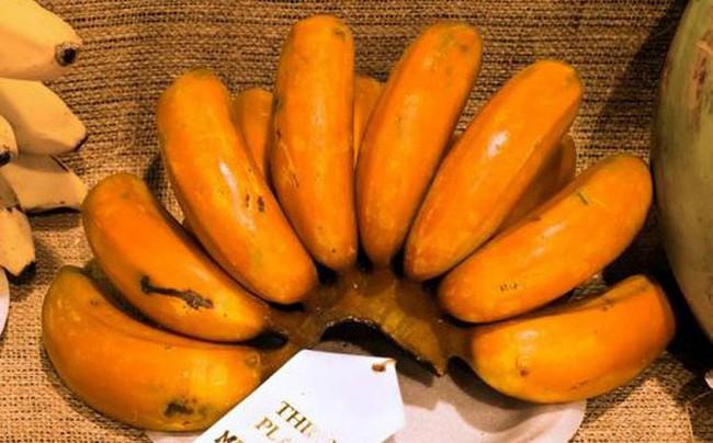 Những giống chuối kỳ lạ nhất thế giới có thể bạn chưa được nhìn thấy - Ảnh 3.