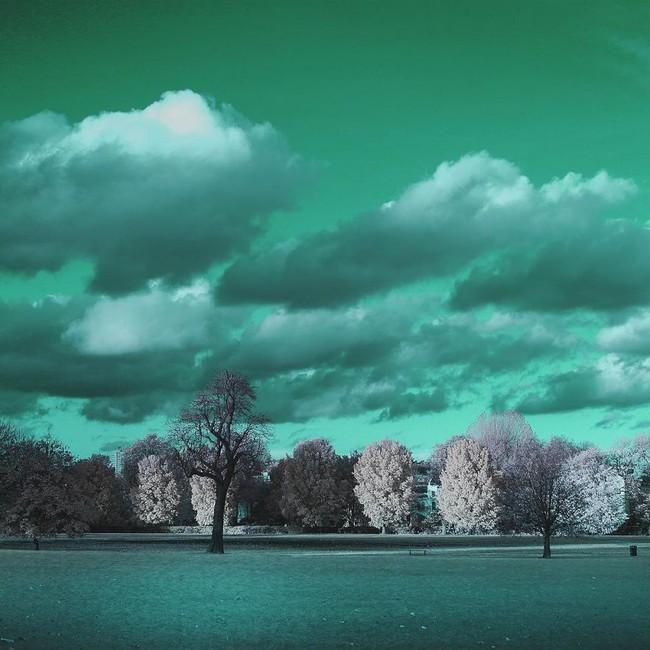 Nếu thế giới chỉ có 2 màu thì cảnh vật vẫn đẹp lung linh khiến bạn ngẩn ngơ - Ảnh 14.