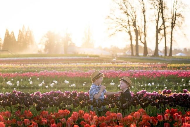 6 khu vườn hoa tulip chỉ nhìn thôi cũng khiến người ta ngất ngây bởi quá đẹp, quá rực rỡ - Ảnh 6.