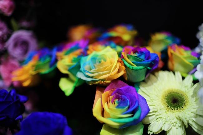 Ngắm loạt hoa nhập khẩu độc, đẹp khiến quý ông không tiếc tiền chi hẳn trăm triệu tặng vợ dịp 8/3 - Ảnh 16.
