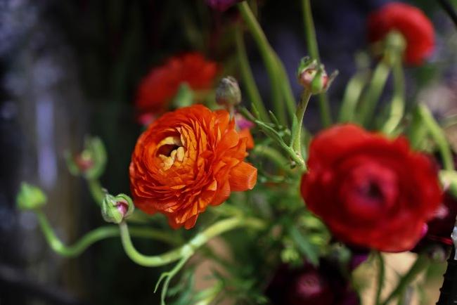 Ngắm loạt hoa nhập khẩu độc, đẹp khiến quý ông không tiếc tiền chi hẳn trăm triệu tặng vợ dịp 8/3 - Ảnh 15.