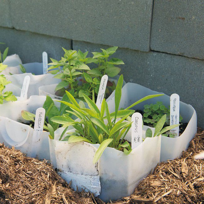 10 ý tưởng tái chế những món đồ cũ phổ biến trong nhà thành chậu gieo hạt lý tưởng - Ảnh 9.