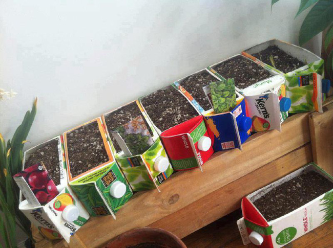 10 ý tưởng tái chế những món đồ cũ phổ biến trong nhà thành chậu gieo hạt lý tưởng - Ảnh 10.