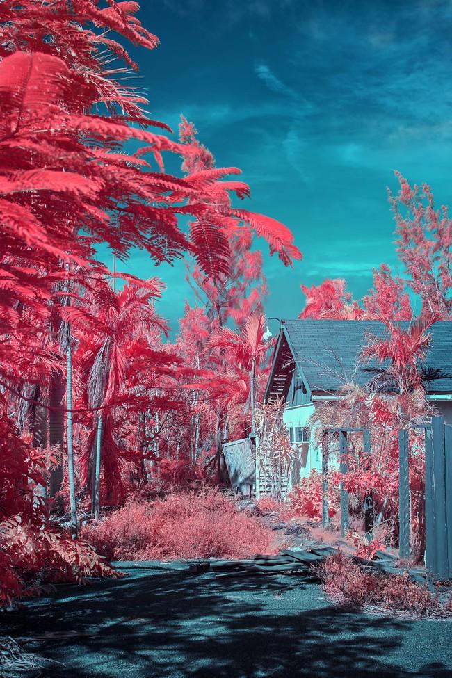 Nếu thế giới chỉ có 2 màu thì cảnh vật vẫn đẹp lung linh khiến bạn ngẩn ngơ - Ảnh 6.