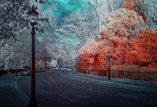 Nếu thế giới chỉ có 2 màu thì cảnh vật vẫn đẹp lung linh khiến bạn ngẩn ngơ - Ảnh 9.