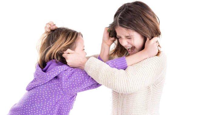 Biểu đồ bánh xe giúp bố mẹ giải quyết mọi tranh chấp của trẻ một cách ôn hòa - Ảnh 1.