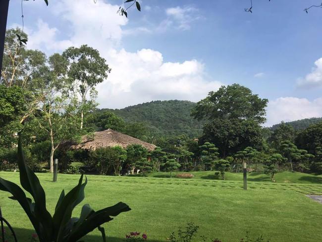 Cuộc sống bình yên của gia đình ca sĩ Mỹ Linh trong nhà vườn ngập tràn sắc hoa ở ngoại ô - Ảnh 4.