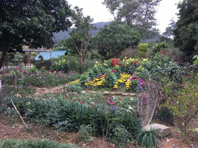Cuộc sống bình yên của gia đình ca sĩ Mỹ Linh trong nhà vườn ngập tràn sắc hoa ở ngoại ô - Ảnh 16.