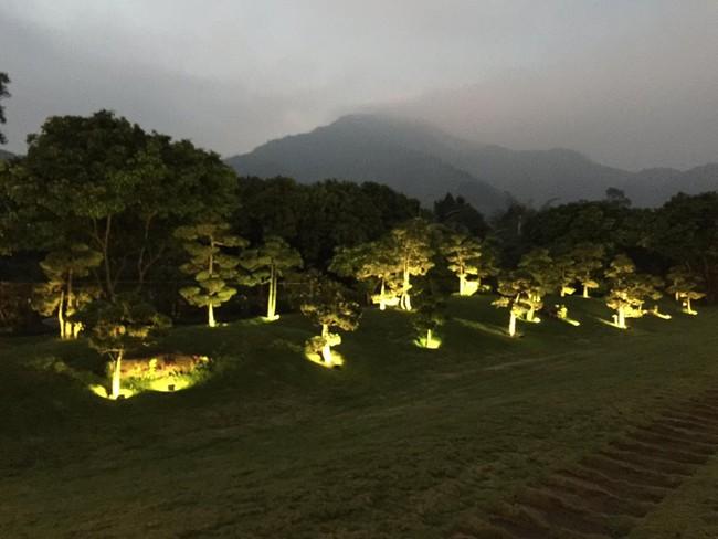 Cuộc sống bình yên của gia đình ca sĩ Mỹ Linh trong nhà vườn ngập tràn sắc hoa ở ngoại ô - Ảnh 19.