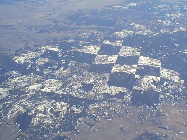 Khu rừng kỳ lạ nhìn từ trên cao trông giống hệt một bàn cờ với các ô vuông đều tăm tắp - Ảnh 5.