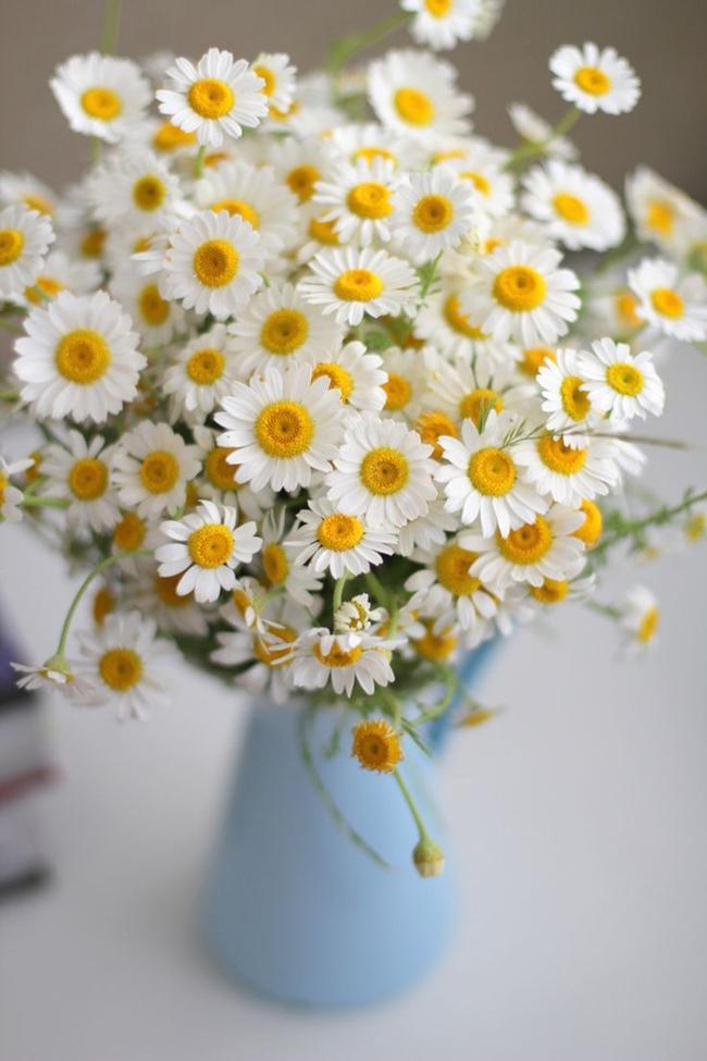 17 ý tưởng cắm hoa trang trí nhà đẹp phát hờn - Ảnh 10.