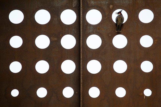 Ngôi nhà nhìn bên ngoài thì tầm thường, bên trong lại đẹp ngời ngời đến khó tin - Ảnh 3.