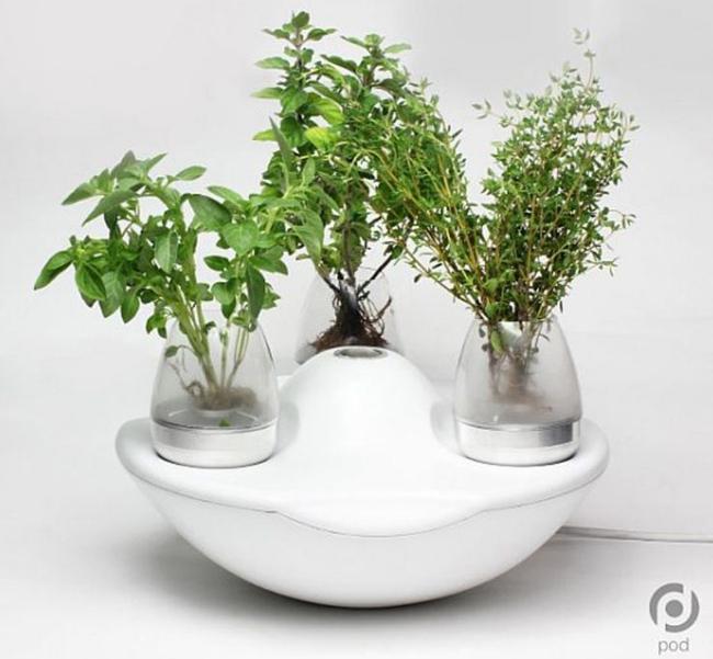 17 hệ thống trồng cây trong nhà vô cùng thông minh cho người bận rộn - Ảnh 4.