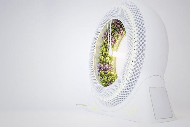 17 hệ thống trồng cây trong nhà vô cùng thông minh cho người bận rộn - Ảnh 6.