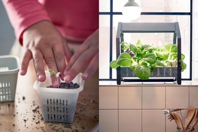 17 hệ thống trồng cây trong nhà vô cùng thông minh cho người bận rộn - Ảnh 11.